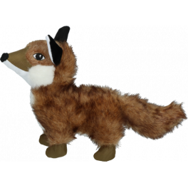 Wild Life Dog Fox
