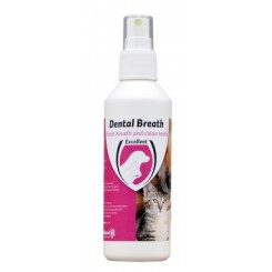 Dental Breath - Tooth Spray